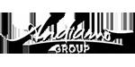 Andiamo Group